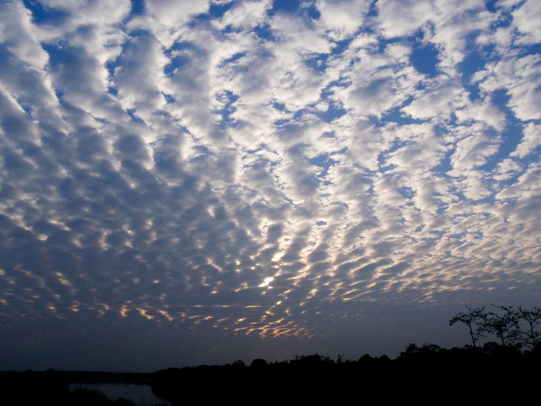 20090111_sky_022a