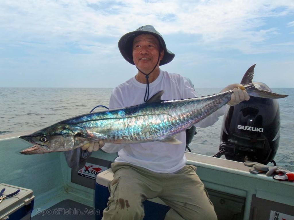 spanish mackerel (tenggiri)