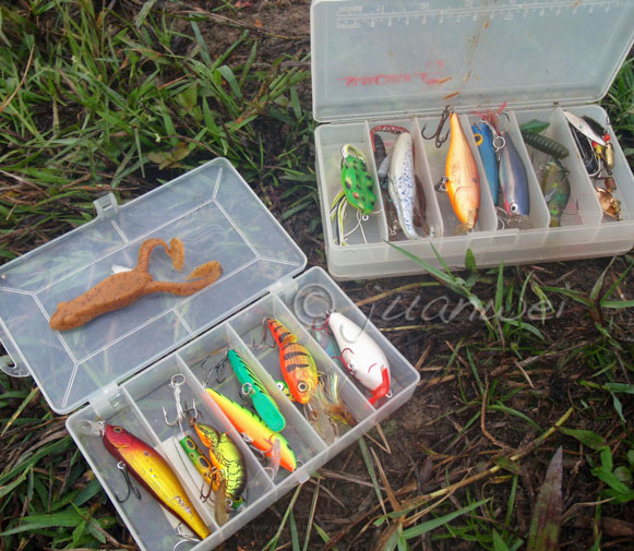lure boxes