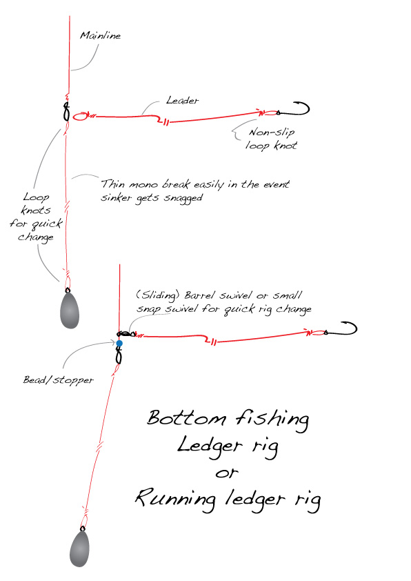 how to rig for bottom fishing ledgering running ledger