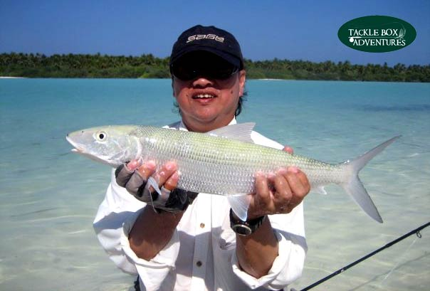 Fly Fishing Maldives Bonefish