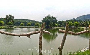 Fish Valley fishing pond