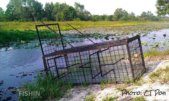 Spotted at fishing spots: What do you think this big steel cage holds?