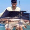 sailfish-rompin-chang-moh-760