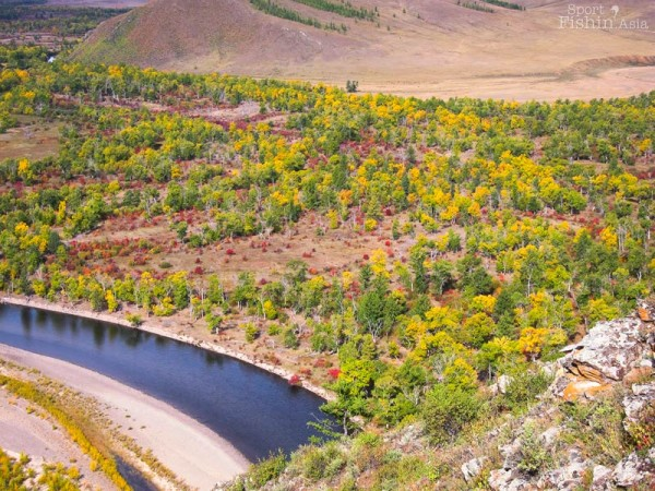 autumn-fall-scenery-fly-fishing-mongolia
