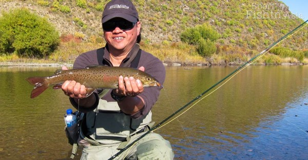 lenok--fly-fishing-mongolia