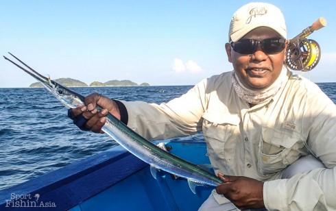 Hound-Needlefish-Todak-Garfish-Pulau-Jarak-Sembilan-Fly-Fishing_20130319_2424