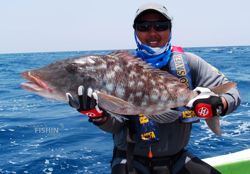 [video] Fight… Fight or Flight? – Sport Fishing the Maldives