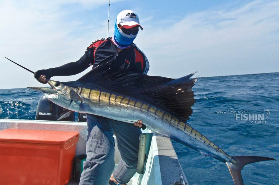 We now discourage anglers from taking hero shots with sailfish sitting on their lap. We encourage not completely lifting of fish out of the water to help speed up the release process of these magnificent fish.