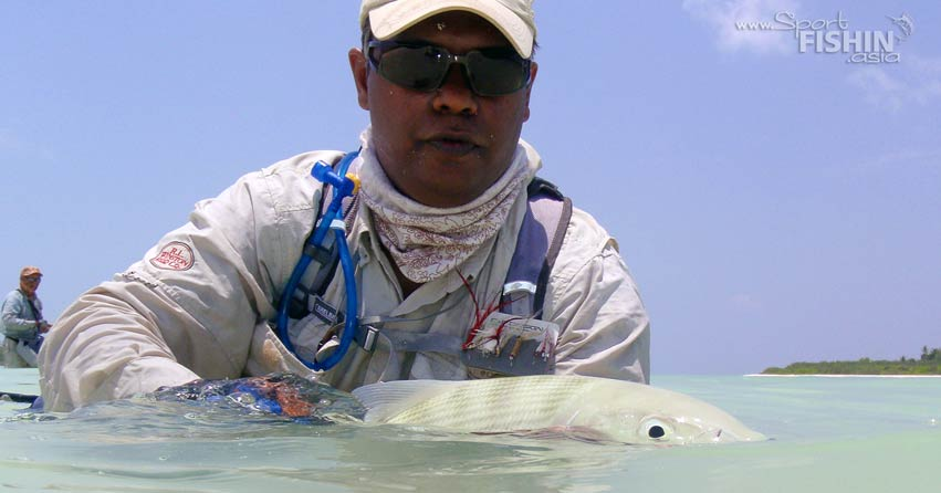 The bonefish makes incredibly fast runs when hooked