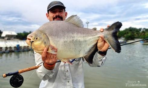 pacu-natural-exotic-fishing-pond-rawang-