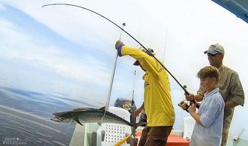 joakim-albin-spanish-mackerel