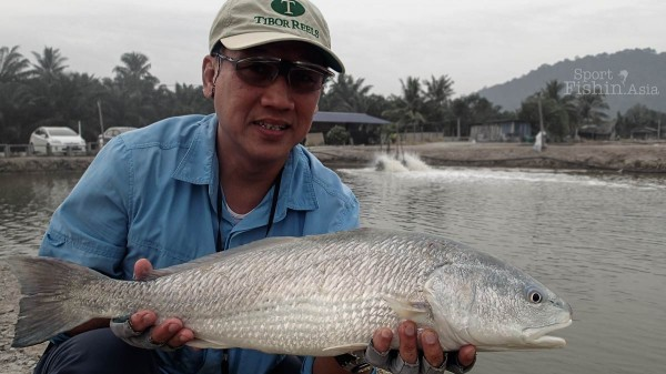 fendi-fly-fishing-redfish-red-drum-senangin-jugra-banting-malaysia_140122_7928