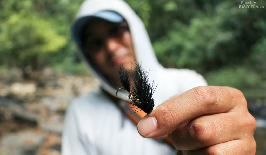 Thai Mahseer Straightens Hook [video]