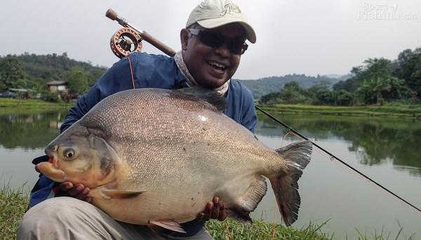 pacu-fly-fishing-david-140202_8034
