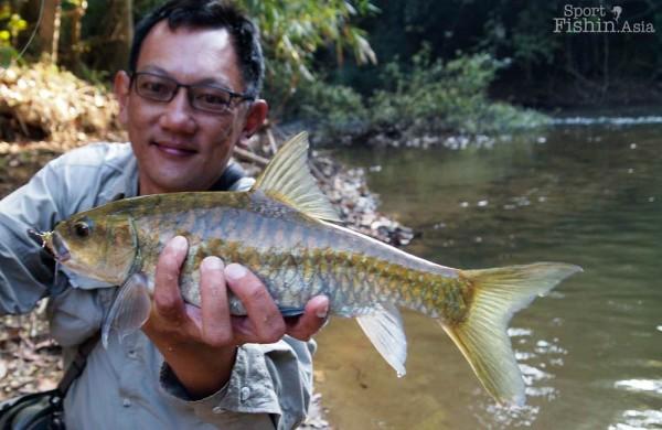 thai-mahseer-fly-fishing-P2052962-