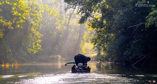thai-mahseer-fly-fishing_140205_8455