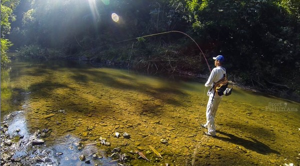 Wonderful place to be at. Yusaku-San onto a mahseer.