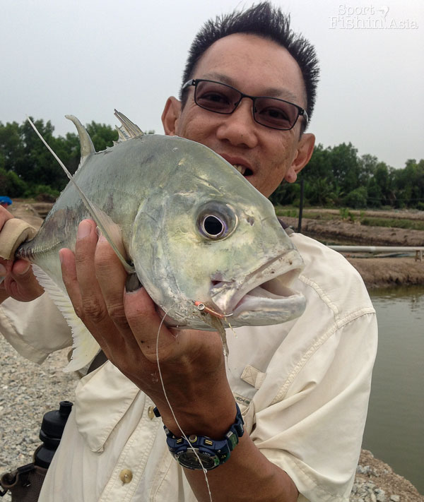 GT-giant-trevally-jugra-banting-fishing-pond_-(5)