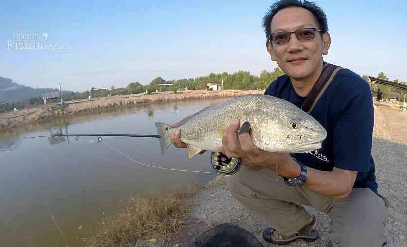 Saltwater pond fishing jugra banting for Saltwater drum fish
