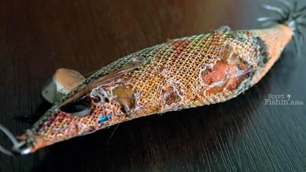chewed-up-yamashita-squid-jig_-(3)