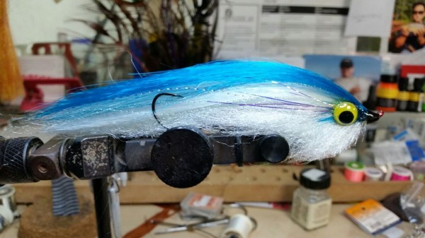 A deceiver fly for sailfish tied by Nick