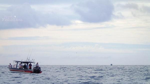boats-sailfish-kuala-rompin-fishing-charter_140828_1229