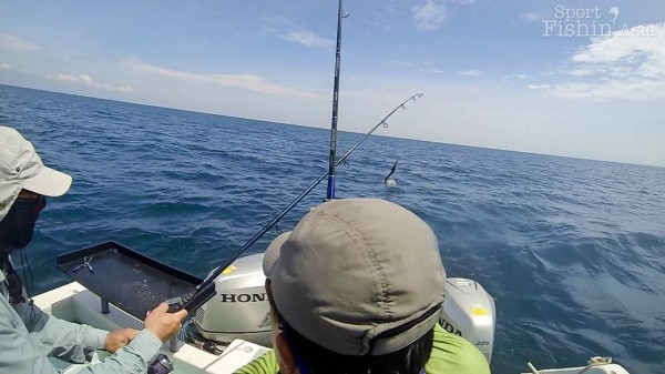Crossing rods- jumping fish