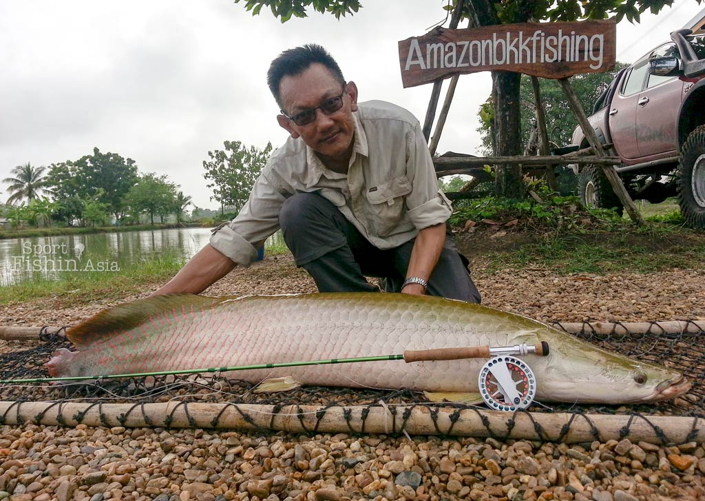 Arapaima Fly Fishing at AmazonBKK Bangkok Thailand