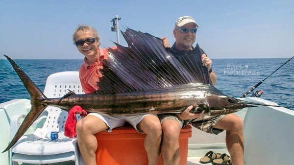 You really have to appreciate the beauty of the sailfish, and the size of the tail and pectoral fins.