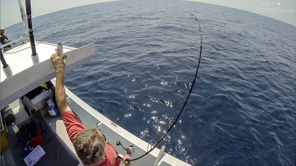 A nice bend on Mac's rod pulling the big sailfish