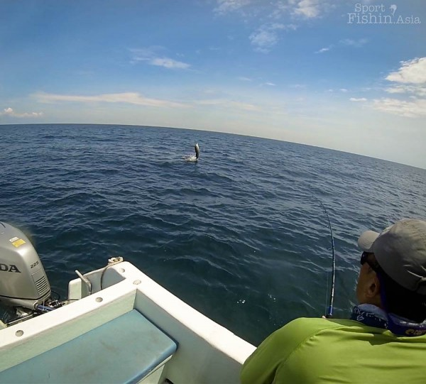 Anglers who knows what they're doing makes it easier to land a double header