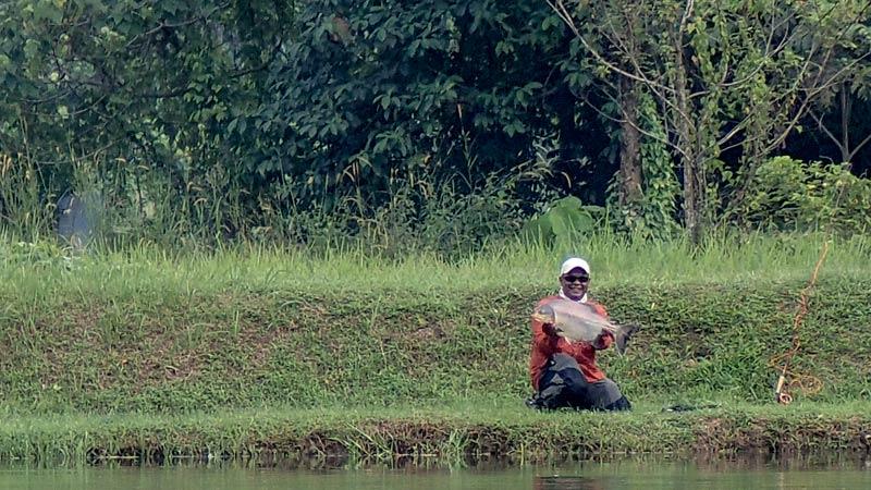 pacu-semenyih-fly-fishing_140712_0351