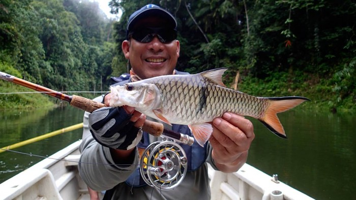 Irhamy with a sebarau on fly
