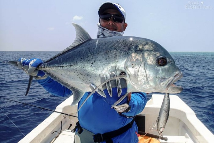 Another nice giant trevally on stickbait