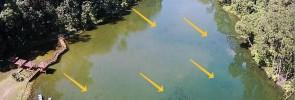 Pacu from the air at Empangan Air Kuning (EAK)