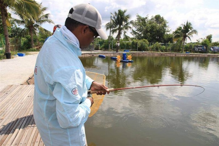 jurassic-sw-saltwater-fishing-pond-malaysia-20150504-(3)