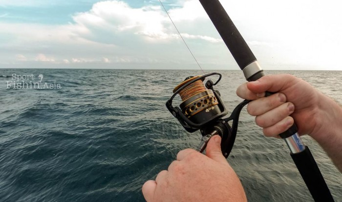The PENN Battle 2 reel spins in a blur as a sailfish strips a fair bit of line off the spool making that sound all of us loves to hear. Reel matched to a PENN Battle rod.