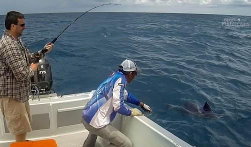 sailfish-landing-Kuala-Rompin-dan