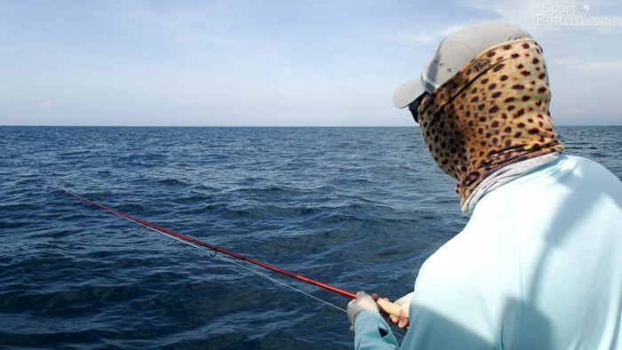 Fly casting to fast moving pelagic from a boat is not easy at all