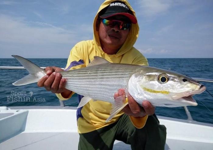 Kuala Rompin bonefish