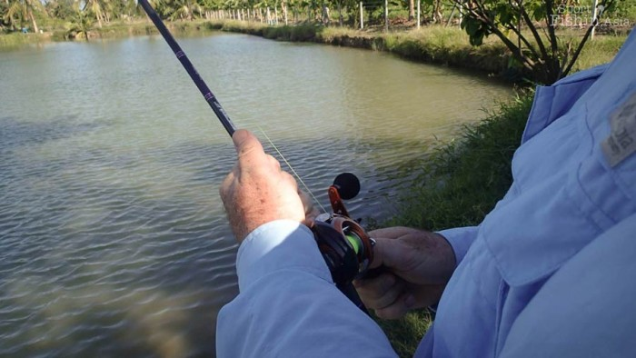 The Abu Garcia OrangeMax in action