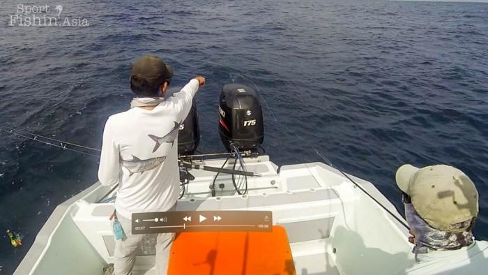 fly-fishing-rompin-sailfish-dron-20150824
