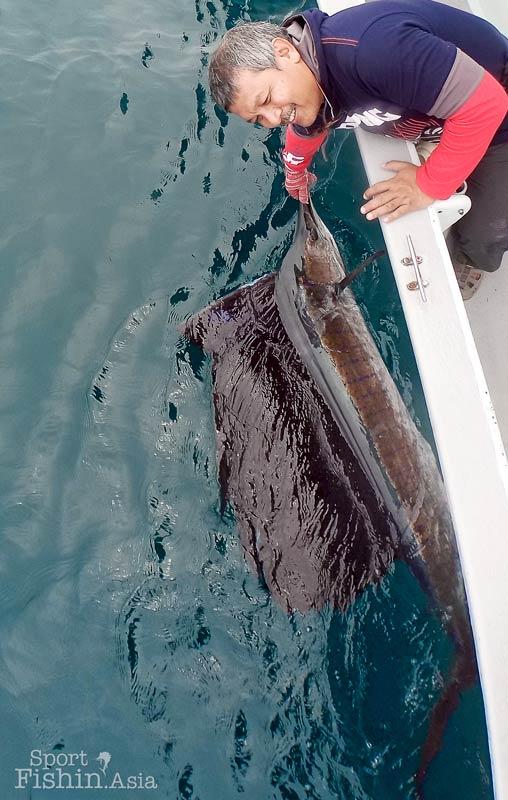 sailfish-rompin-ary-150827_3123