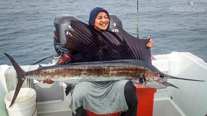 sailfish-rompin-ary_150827_2728