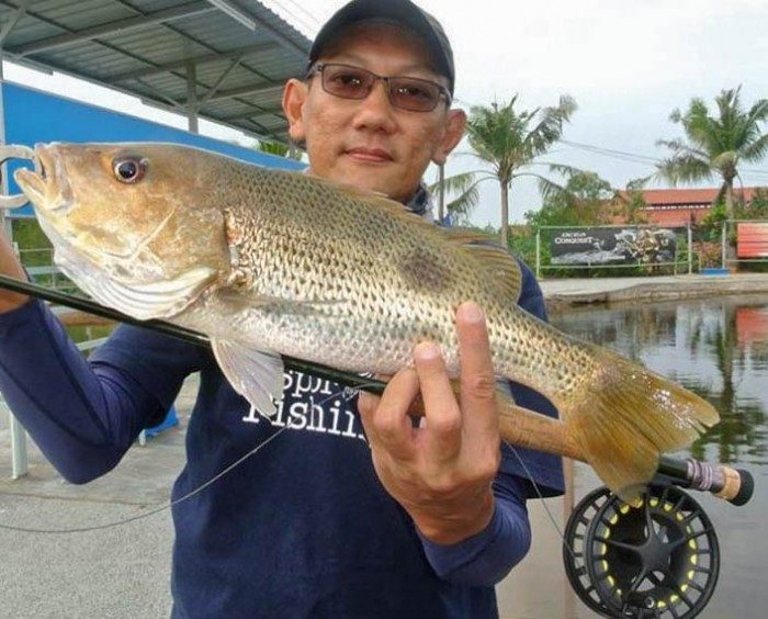 snapper-sw-jurassic-saltwater-fishing-pond-malaysia-20150624-(3)