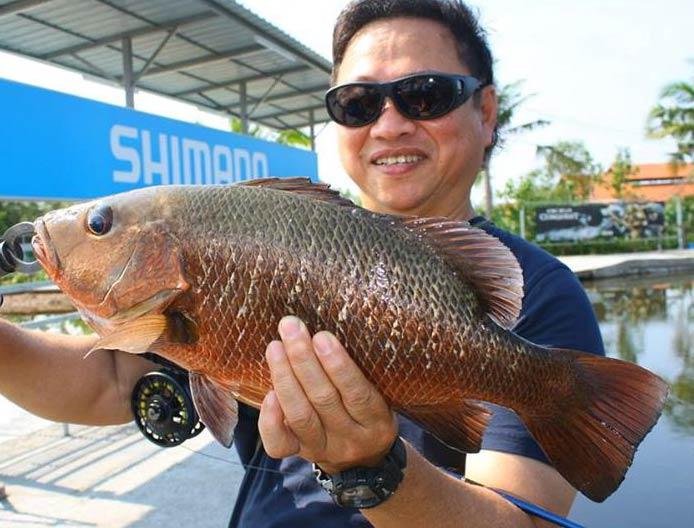 mangrove-jack-sw-jurassic-fishing-20151112-(1)