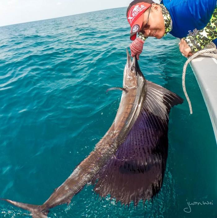 sailfish-rompin-ary-20150828-(12)