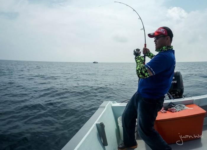 sailfish-rompin-ary-20150828-(15)