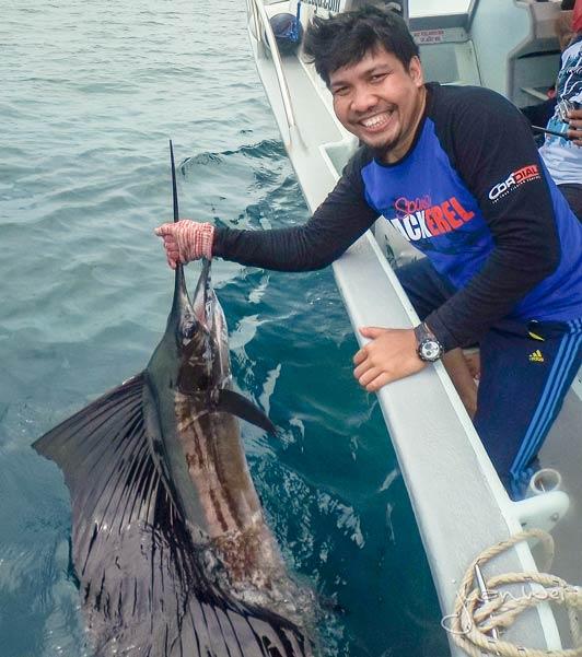 sailfish-rompin-ary-20150828